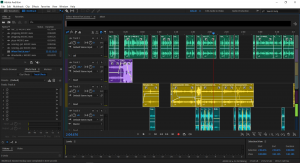 Adobe Audition Screen Shot for Where the Cat Soundwalk