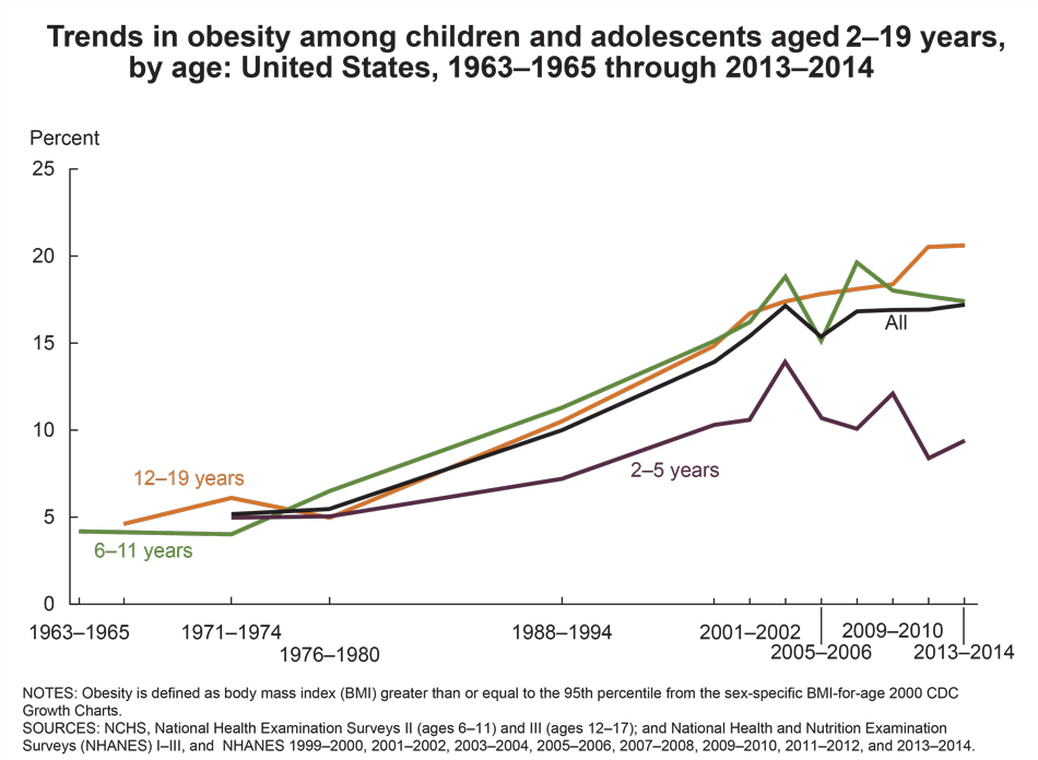 Trends in Overweight and Obesity among Youth in the US chart between 1963 and 2014