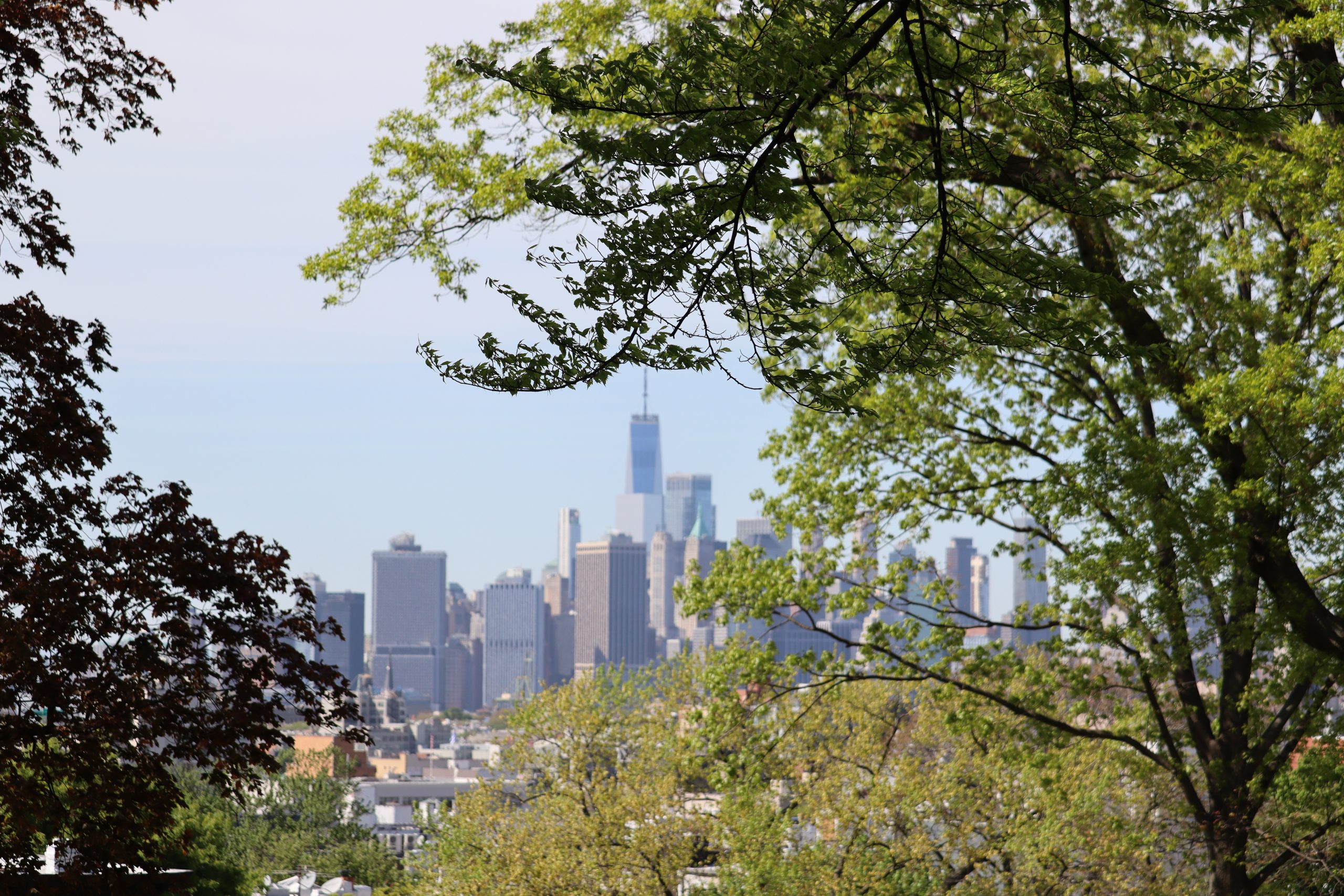 View of Manhattan from Green-Wood Cemetery using a 70MM (thought it was at 55MM) lens length. (no 2x telephoto adapter) You can see how the sides are blurry. I didn't feel the magnification was worth it.