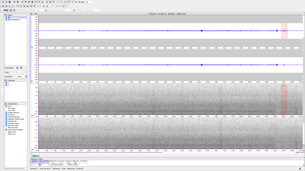 5 of 5 - Screen Shot of my attempt to analyze one of several 10-15 min recordings I made Friday night, 23 April 21, from my back patio in Bushwick, Brooklyn, NY. Most of these are passing cars with loud music, loud motorcycles, the occasional loud neighbor, and even an airplane. I noticed how most of the KHz measurements spanned quite above and below the 5KHz range (which is where birdsong falls.)