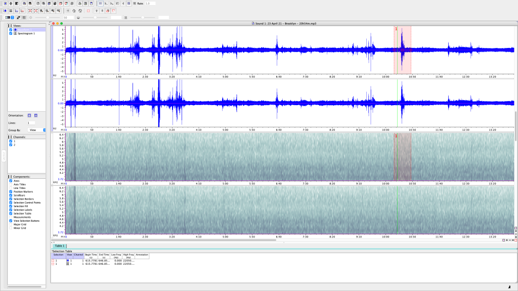 1 of 5 - Screen Shot of my attempt to analyze one of several 10-15 min recordings I made Friday night, 23 April 21, from my back patio in Bushwick, Brooklyn, NY. Most of these are passing cars with loud music, loud motorcycles, the occasional loud neighbor, and even an airplane. I noticed how most of the KHz measurements spanned quite above and below the 5KHz range (which is where birdsong falls.)