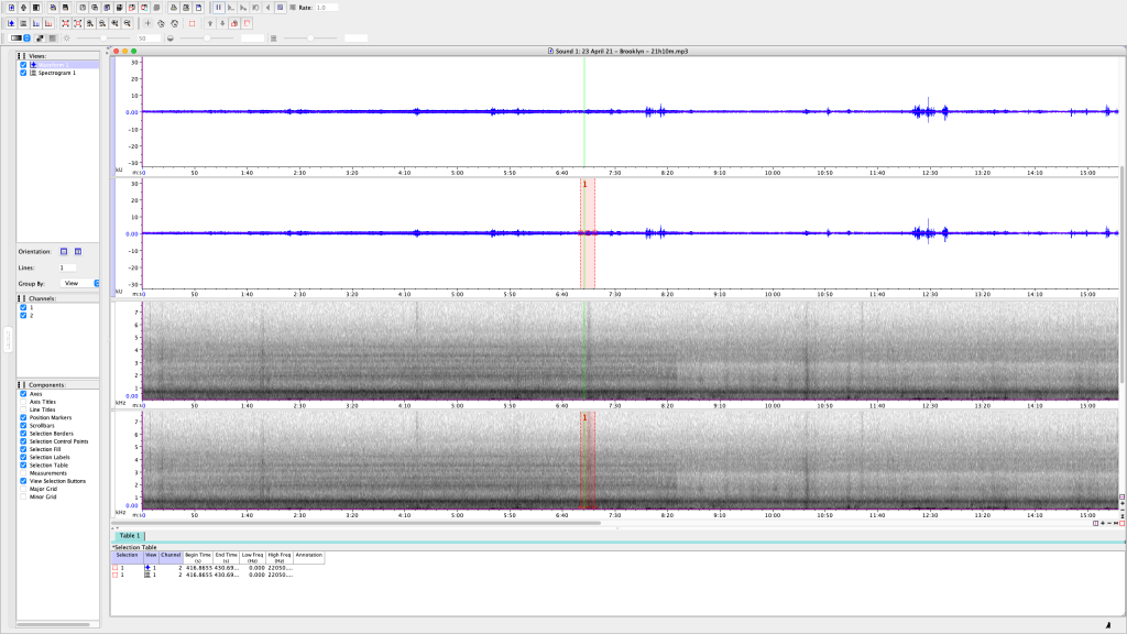 2 of 5 - Screen Shot of my attempt to analyze one of several 10-15 min recordings I made Friday night, 23 April 21, from my back patio in Bushwick, Brooklyn, NY. Most of these are passing cars with loud music, loud motorcycles, the occasional loud neighbor, and even an airplane. I noticed how most of the KHz measurements spanned quite above and below the 5KHz range (which is where birdsong falls.)