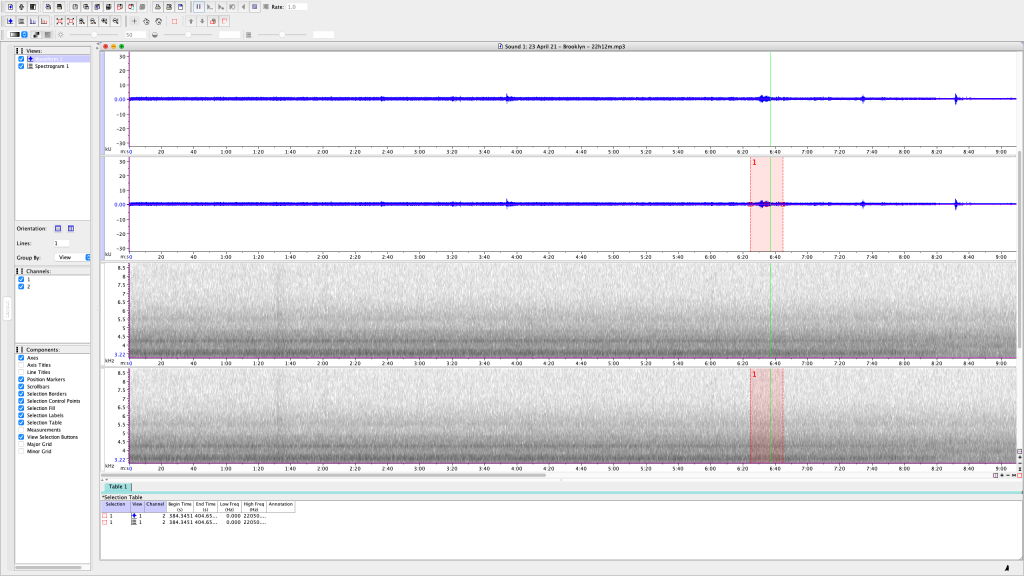 4 of 5 - Screen Shot of my attempt to analyze one of several 10-15 min recordings I made Friday night, 23 April 21, from my back patio in Bushwick, Brooklyn, NY. Most of these are passing cars with loud music, loud motorcycles, the occasional loud neighbor, and even an airplane. I noticed how most of the KHz measurements spanned quite above and below the 5KHz range (which is where birdsong falls.)