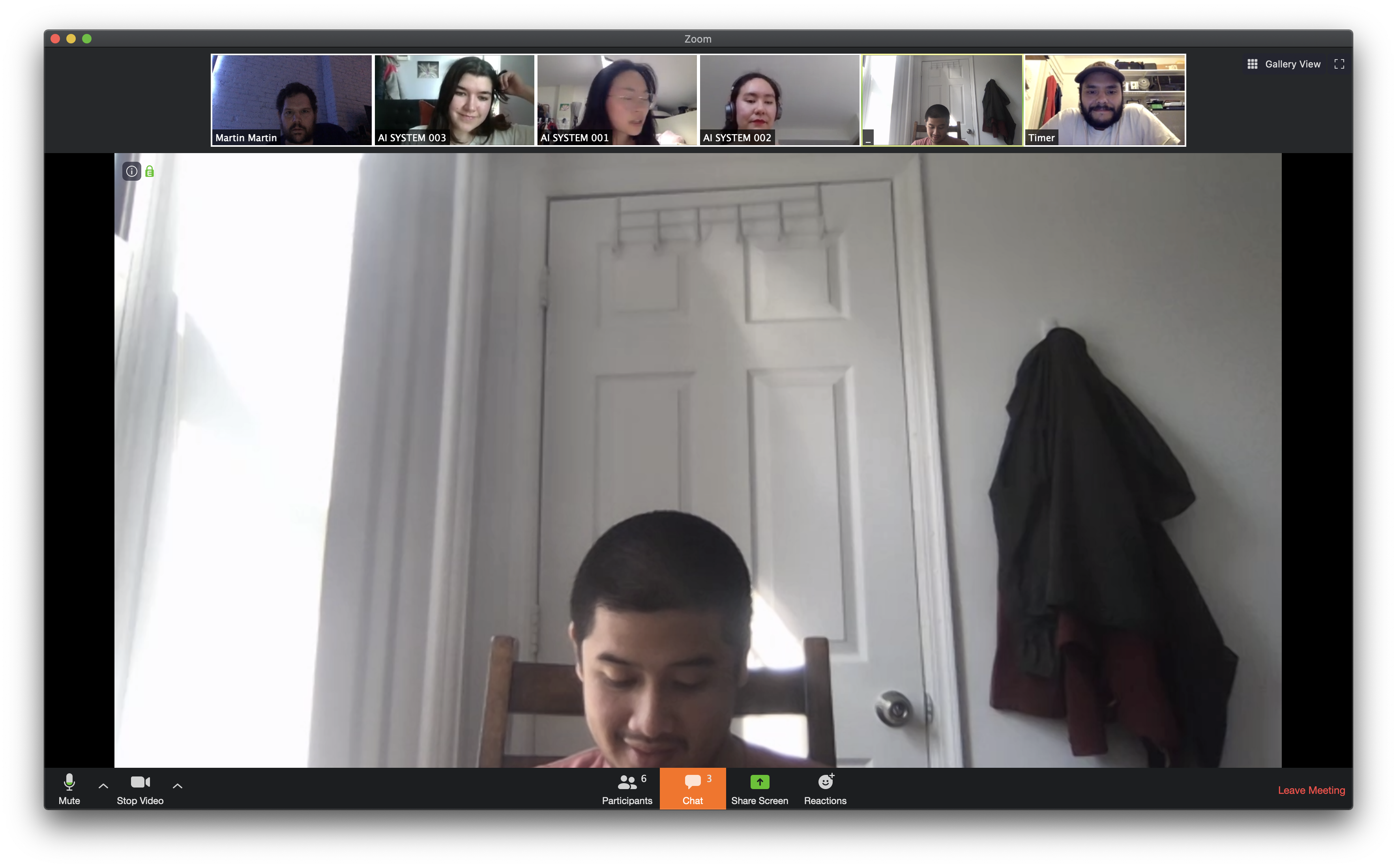 Screen Shot of a Post-Escape Zoom Meeting