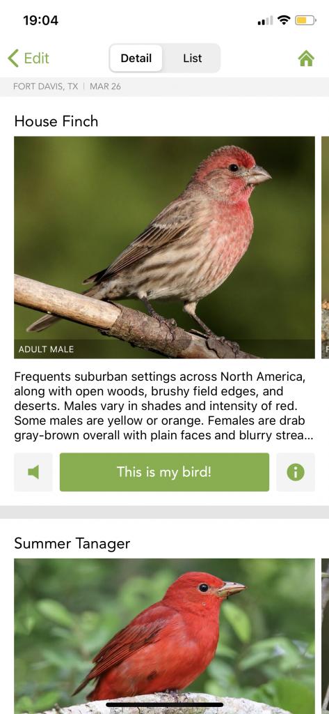 Screen Shot of Merlin Bird Identifier App we used to identify birds we saw on the Ft. Davis, West Texas Birdcam